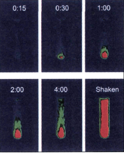 Time-resolved, two-dimensional magnetic resonance images of 129Xe dissolved in benzene, taken after the benzene was exposed to hyperpolarized 129Xe. (Adapted with permission from the American Association for the Advancement of Science.)