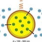 In this new NMR/MRI technique, hyperpolarized xenon gas bubbled into solution serves as the reporting medium as it moves in and out of a perfluorocarbon nanoemulsion droplet that binds to a molecular target. The contrast stems from the interaction of the distinguishable signals outside and inside the droplets.