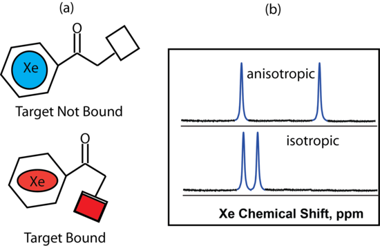 remote functionalization reactions in steroids